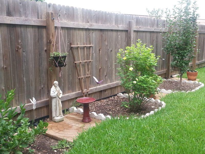 Backyardgarden